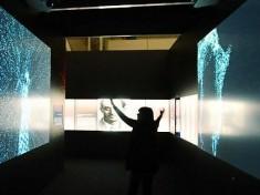 Fisica senza fisime: la mostra su Enrico Fermi a Bologna