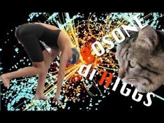 Il Bosone di Higgs spiegato con un gatto e una nuotatrice ungherese