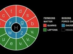 """Fermione Di Majorana E Spin Quantico Liquido, Arriva La """"Prova Del Nove"""""""