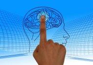 Libero arbitrio: cosa dicono le neuroscienze