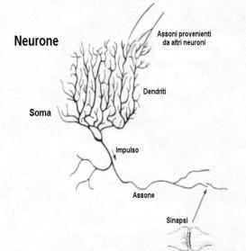 modello-neurale-di-Hopfield