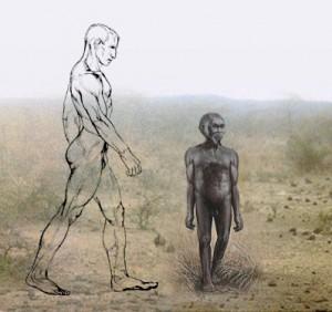 Nittaewo, fossili viventi?