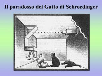 Il paradosso del gatto di Schrödinger si è appena fatto molto più complicato