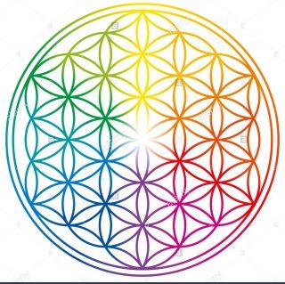 fiore-della-vita-nei-colori-dell-arcobaleno-figura-geometrica-simbolo-spirituale-geometria-sacra-cerchi-sovrapposti-formando-un-fiore-come-modello-mkdmym