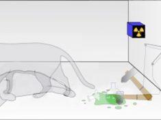 L'origine delle probabilità secondo la meccanica quantistica