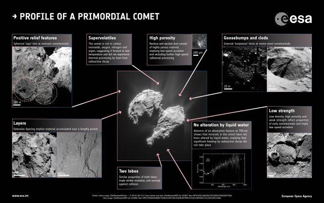Rosetta: come nascono le comete