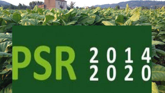 Sviluppo rurale 2014-2020 - Agricoltura e sviluppo rurale