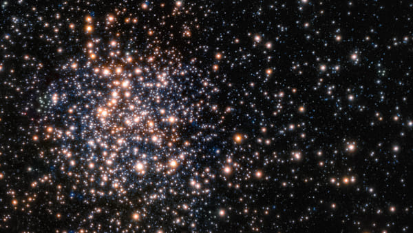 Ricerca Unibo, scoperta stellare: l'ammasso stellare Terzan5