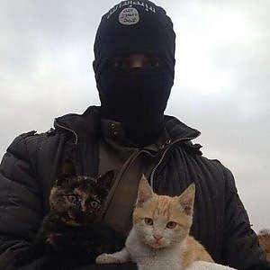 L'Isis dichiara guerra anche ai gatti: una legge per sterminarli