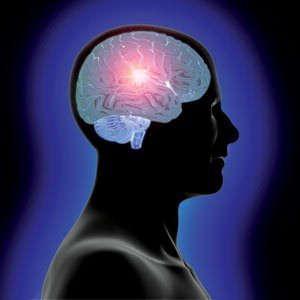 """Via a ricerca per """"craccare"""" il cervello. A caccia della coscienza"""