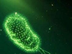 Arriva in Italia un nuovo antibiotico contro le infezioni più difficili