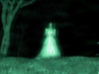 I fantasmi: fantasia o realtà ?