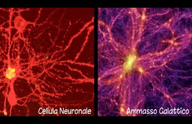 Una nuova ricerca paragona la struttura e lo sviluppo dell'Universo alle reti neurali di un cervello