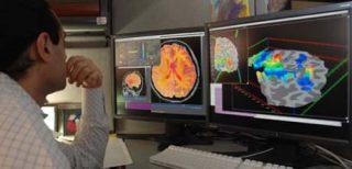 Ricercatore al lavoro con immagini del cervello. (Credit: NIMH)