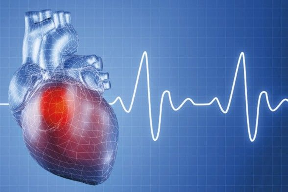 Frequenza cardiaca e rischio cardiovascolare