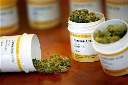 Valutazioni sulla Cannabis terapeutica