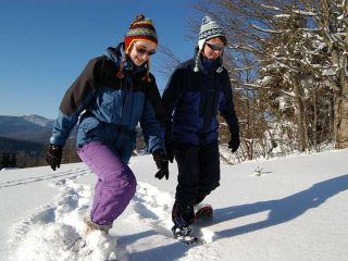 Ciaspole Esplorando in tranquillità i sentieri innevati si allena tutta la parte inferiore del corpo. Il movimento è più faticoso perché si ha l'ingombro della racchetta attaccata ai piedi che costringe a camminare con una falcata più ampia, in più la neve fresca tende a trattenere la racchetta e esercitare pressione tutte le volte che si sollevano i piedi. Si tratta di un training cardiovascolare che rafforza gambe e braccia e aumenta l'ossigenazione del corpo. Calorie bruciate per ora: 382 per una donna di 55 chili o 476 per una donna di 65-68 chili.