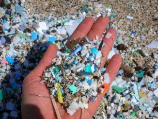 Quanta plastica finisce negli oceani!