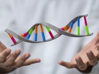 Le mutazioni del DNA determinano l'incidere dei tumori nelle persone