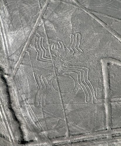 Un glifo nel Deserto di Nazca, in Perù. (Shutterstock)