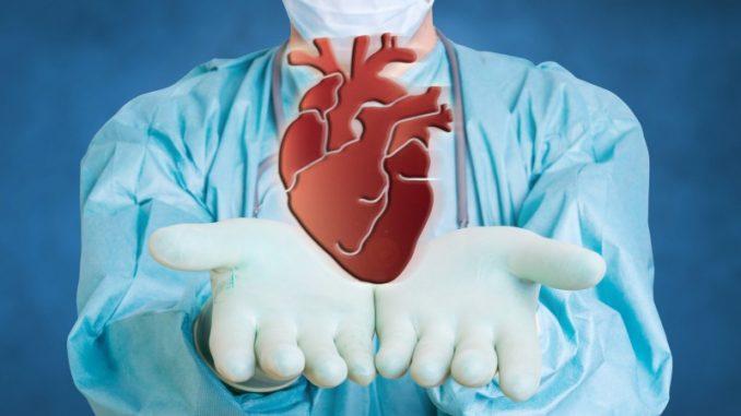 L'Emilia-Romagna, la regione con più donatori di organi