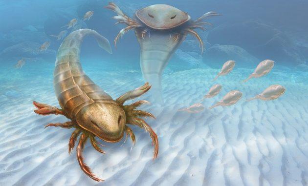 Lo scorpione più letale, quello di mare