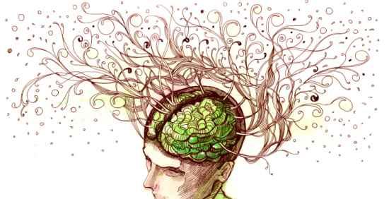 La memoria è questione di geni