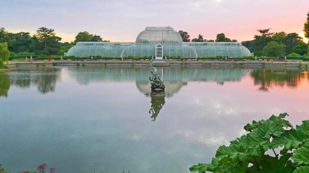 """Un padiglione dei Kew Gardens, appena fuori Londra: il loro report annuale sullo """"stato delle piante"""" rileva quanto poco è diffusa, a livello ufficiale, la conoscenza delle proprietà medicali di molte piante e del rischio concreto di perdere parte di questo patrimonio naturale."""