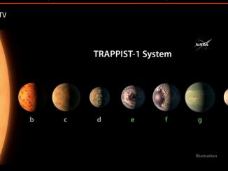 Una rappresentazione del sistema Trappist-1: le tracce d'acqua e i fiocchi di neve rappresentano (con la corretta proporzione) la probabilità che ci sia acqua per i singoli pianeti.|NASA / JPL-CALTECH