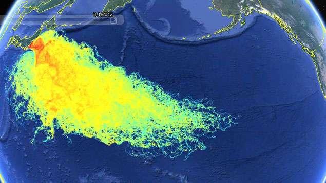Fukushima, gli effetti delle radiazioni sono ancora attivi!