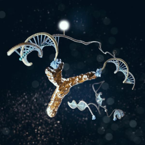 Fionda di nanomacchine per lanciare gli anticorpi dove servono