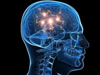 Riprogrammare gli astrociti per combattere il parkinson
