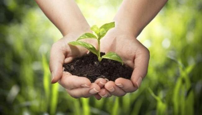 Usa l'hashtag #WithNature e partecipa alla Giornata mondiale dell'ambiente