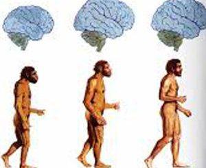 Il salto della conoscenza nell'evoluzione umana