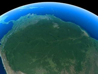 La Norvegia blocca fondo per la difesa della foresta Amazzonica
