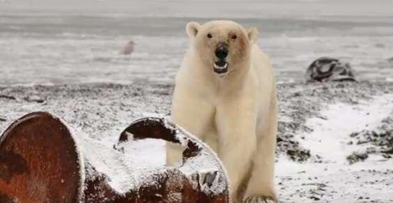 Nuovi pozzi a scopo esplorativo aperti nel mare di Beaufort