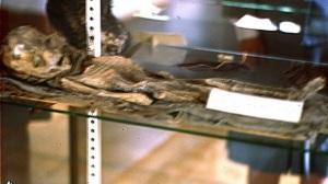 Uno degli alieni di Roswellconservato in una teca (vedi).