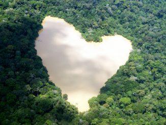 WWF Brasile salva l'Amazzonia dallo sfruttamento minerario