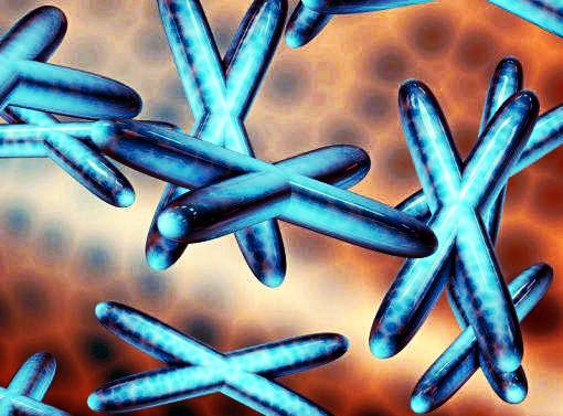 Modificati embroni umani con la tecnica genetica Crispr-Cas9