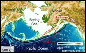 Il piano di subduzione della placca oceanica (a sud), sotto a quella americana (a nord).
