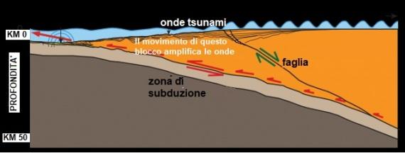 Il blocco centrare di crosta si muove, nel momento in cui avviene un terremoto, lungo il piano di subduzione e amplifica fortemente le onde di uno tsunami.