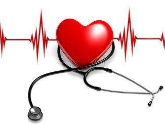 Scoperta una proteina che aiuta il cuore a rigenerarsi