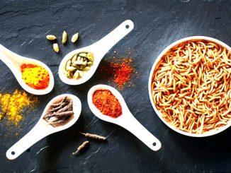 Risolvere l'emergenza alimentare futura mangiando insetti