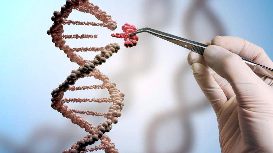 Nuovo metodo ABE per curare malattie del DNA usando la tecnica CRISPR