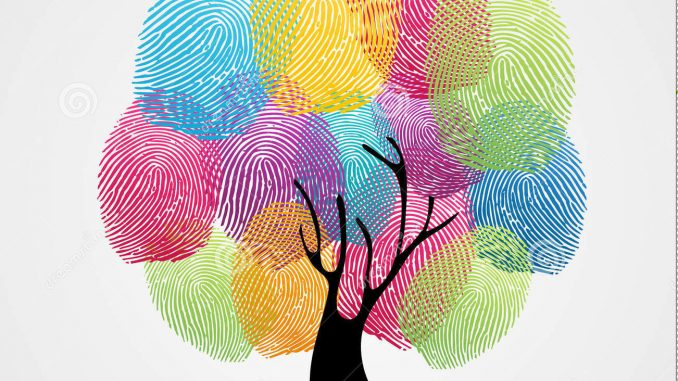 L'indeterminatezza delle impronte digitali, non sono uniche