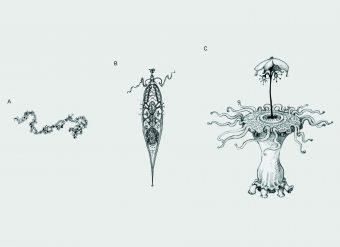 Queste illustrazioni rappresentano i diversi livelli di complessità adattiva che potremmo immaginare quando si parla di alieni. (a) Una semplice molecola autoreplicante, con nessuna progettualità evidente, che può subire la selezione naturale o meno. (b) Un'entità semplice, come una cellula, è già un congegno complesso che deve subire la selezione naturale. (c) Un essere alieno con molte parti specializzate che lavorano insieme ha probabilmente subito importanti transizioni. Crediti: illustrazione di Helen S. Cooper