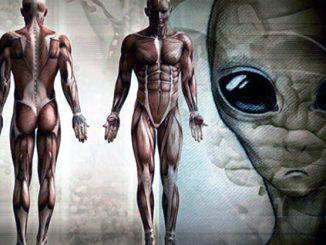 Se non siamo soli nell'Universo, quanto ci somigliano i nostri vicini di casa?