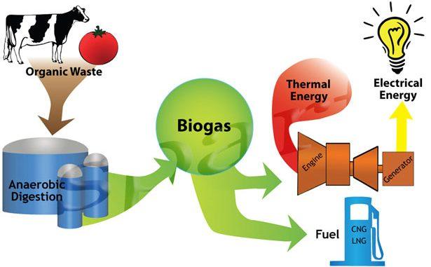 """Fonti rinnovabili, il bio metano è la più """"green"""""""