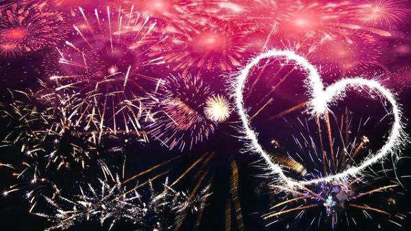 animali, capodanno, fine anno, fuochi artificio, petardi, rauti,wwf