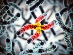 La 'supersomiglianza molecolare' dei gemelli